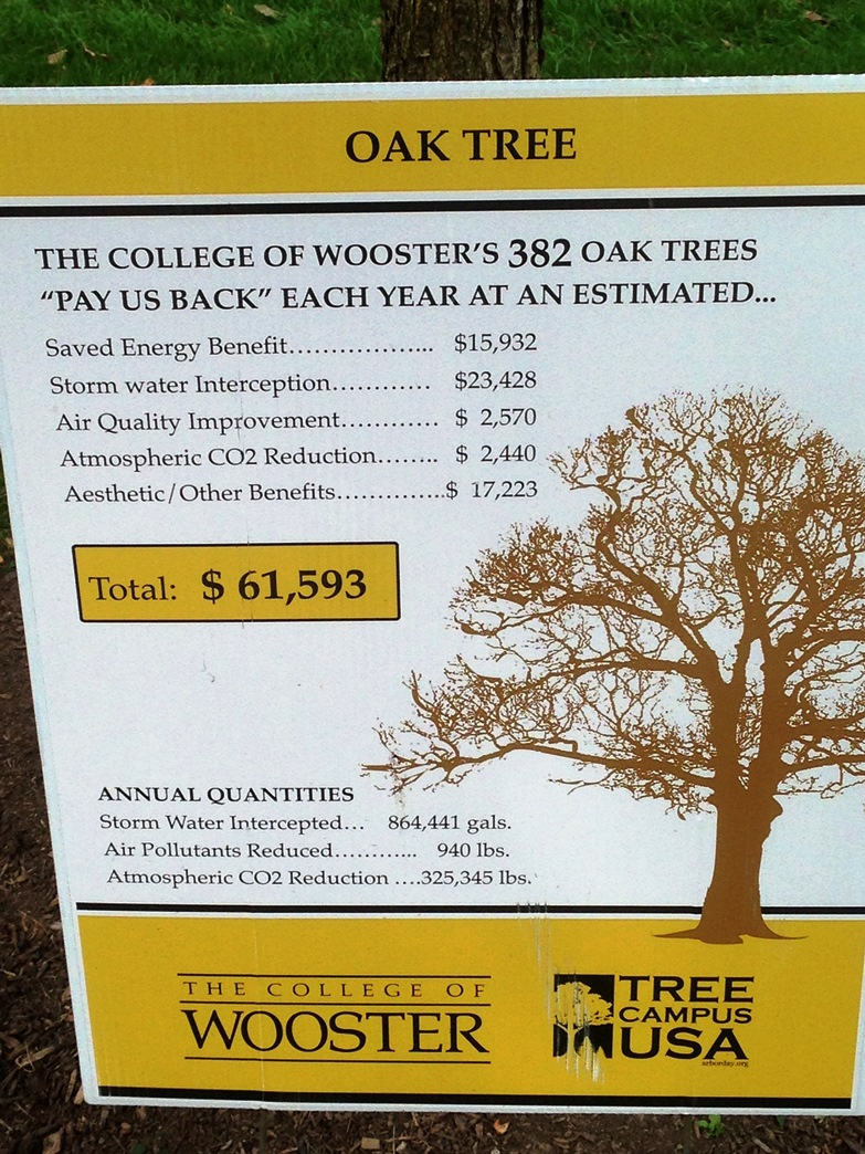 Tree benefits at the College of Wooster