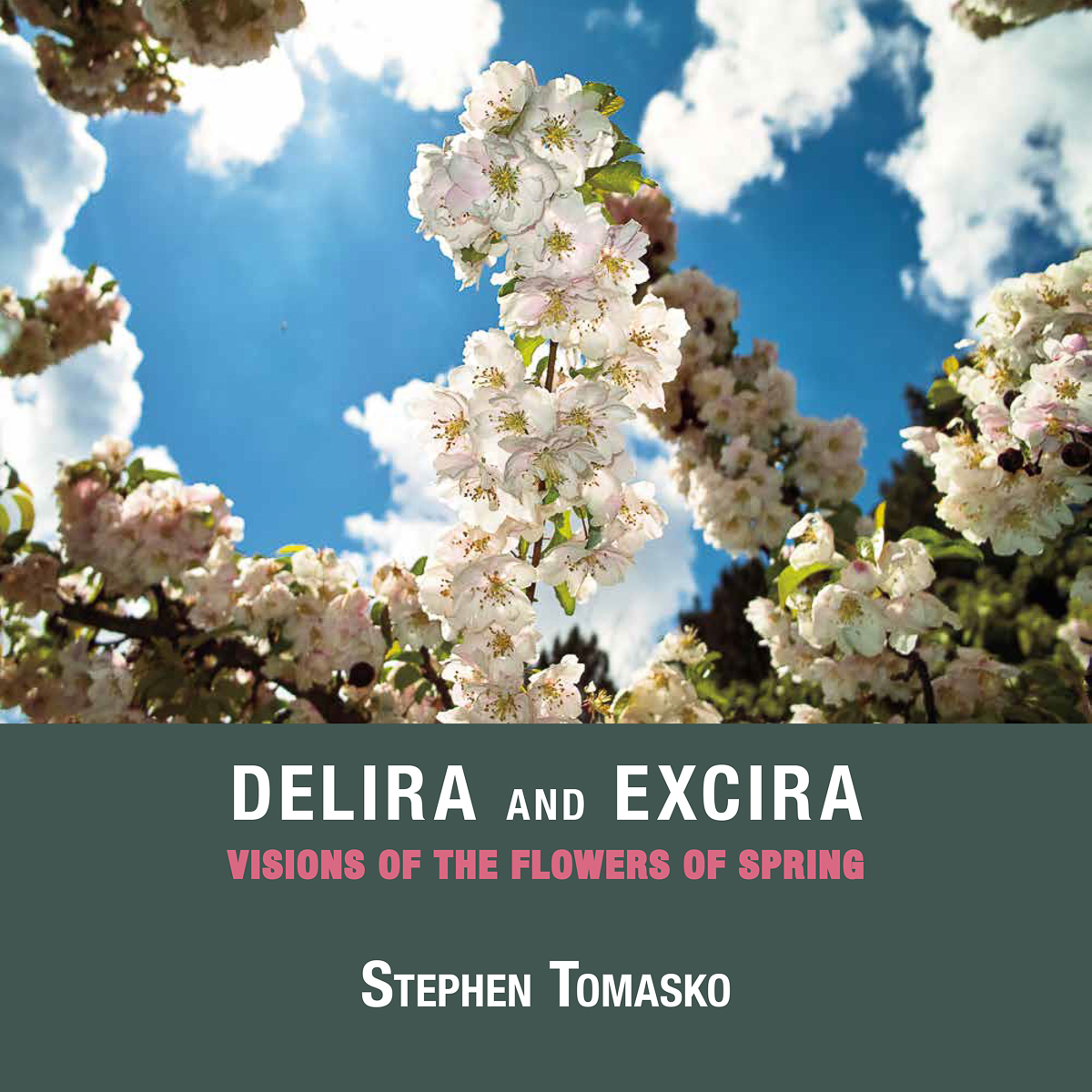 Delira and Excira cover photo
