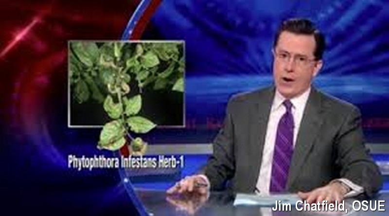 Stephen Colbert and late blight of potato