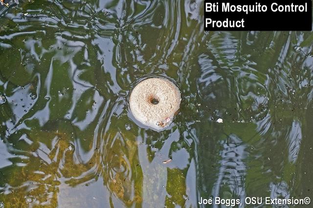 Mosquito Alert Bygl