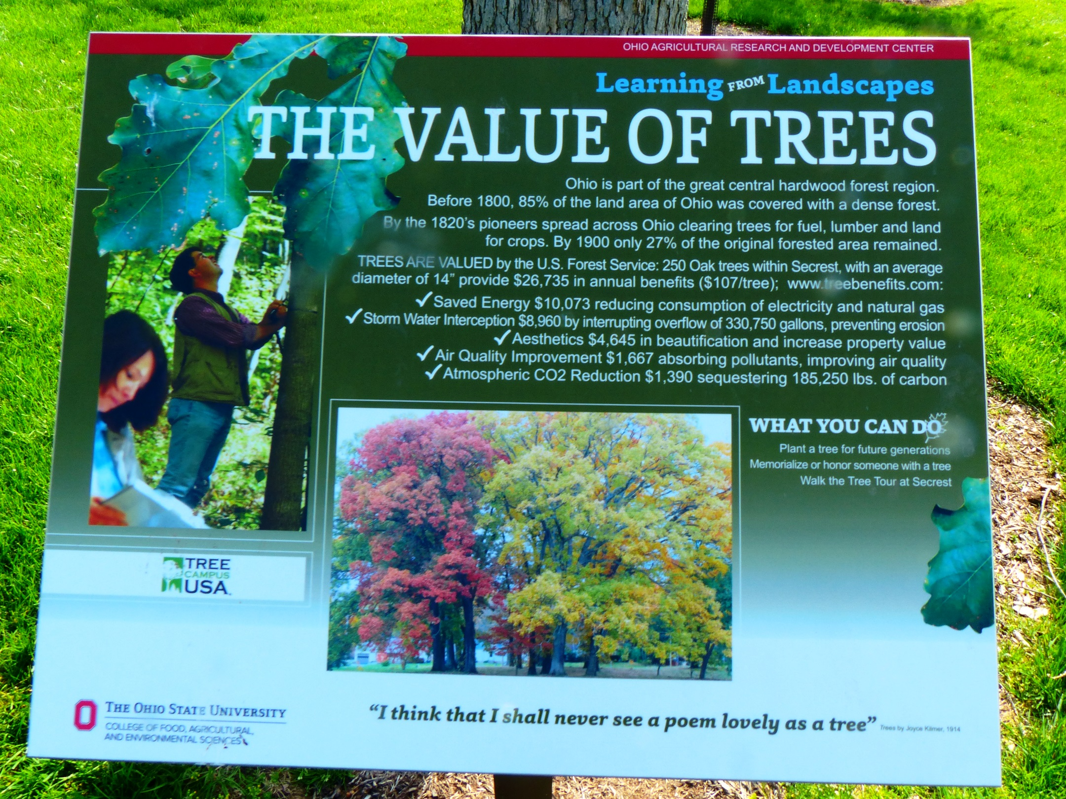 The Value of Trees sign from Secrest Arboretum
