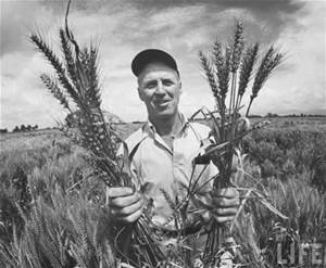Norman Borlaug from Google