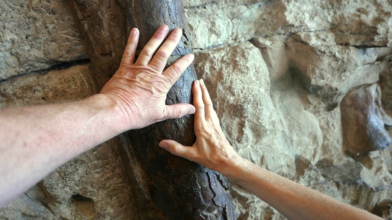 Laying on of hands at Dinosaur National Monument in northeast Utah