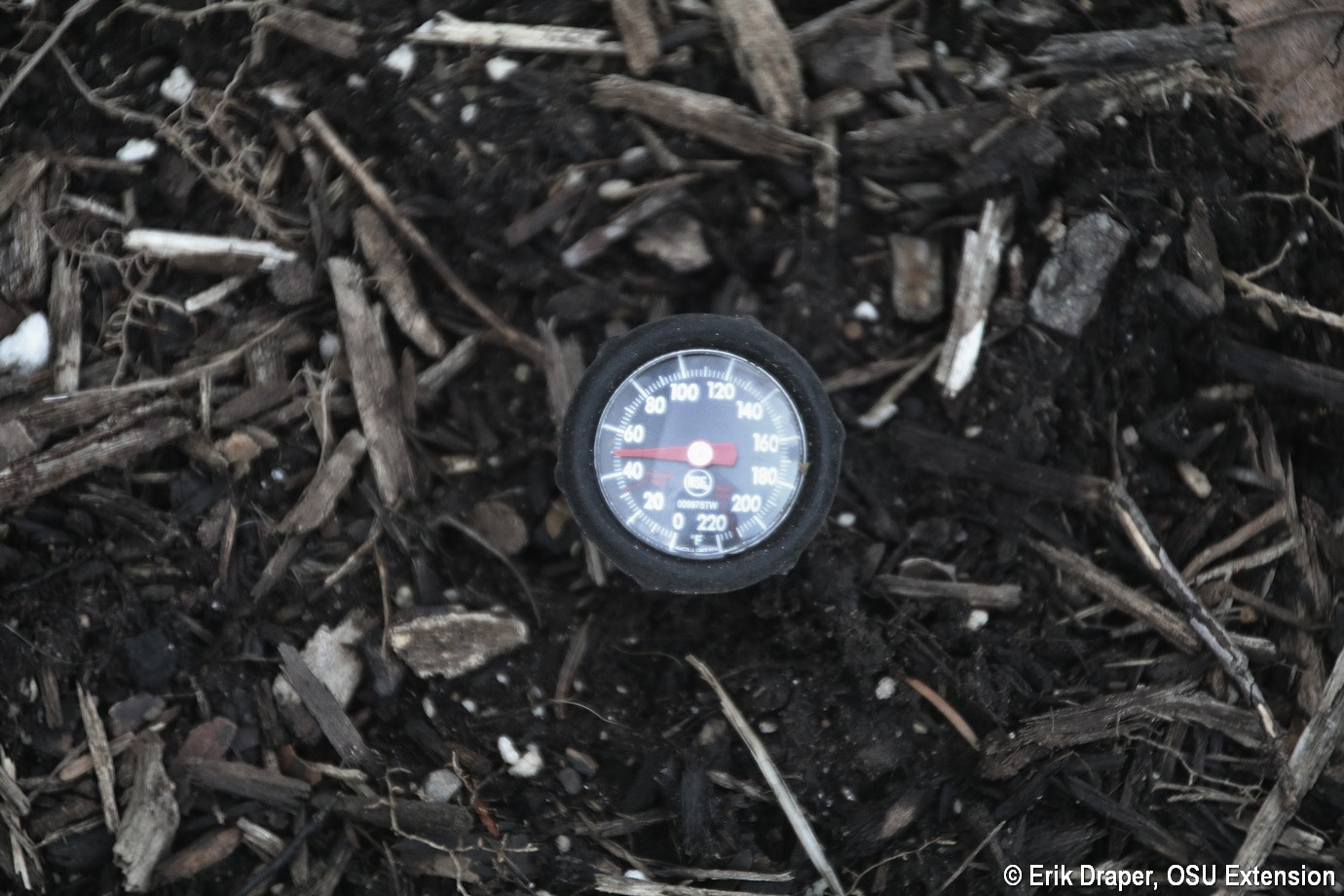 Soil thermometer 50F