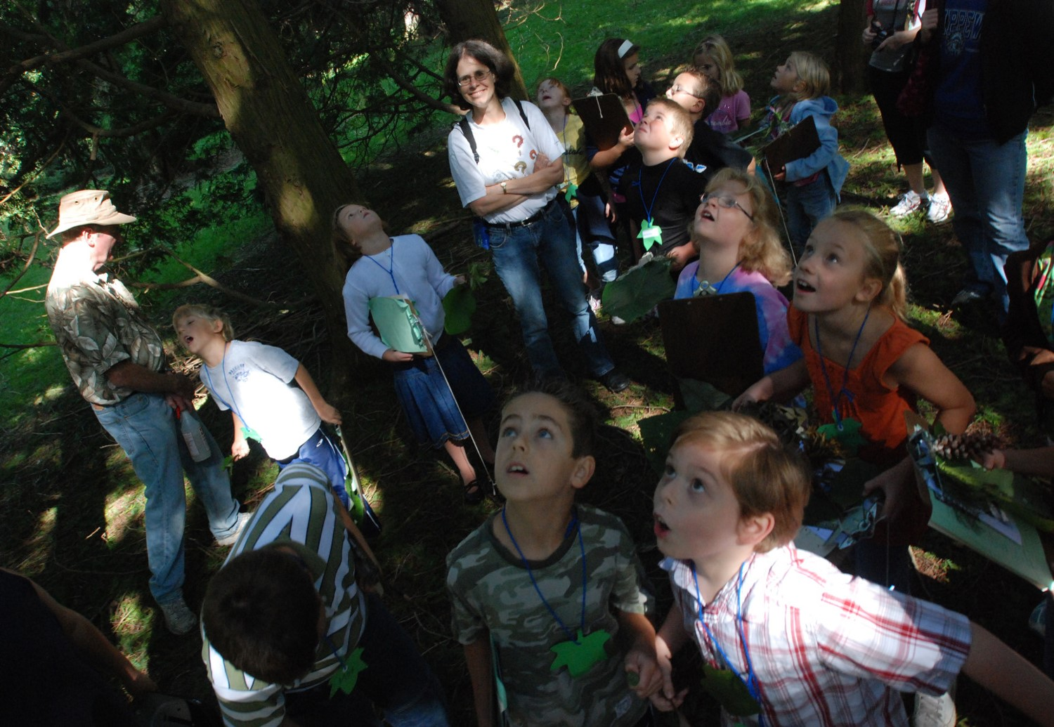 Children wowed by umbrella magnolias