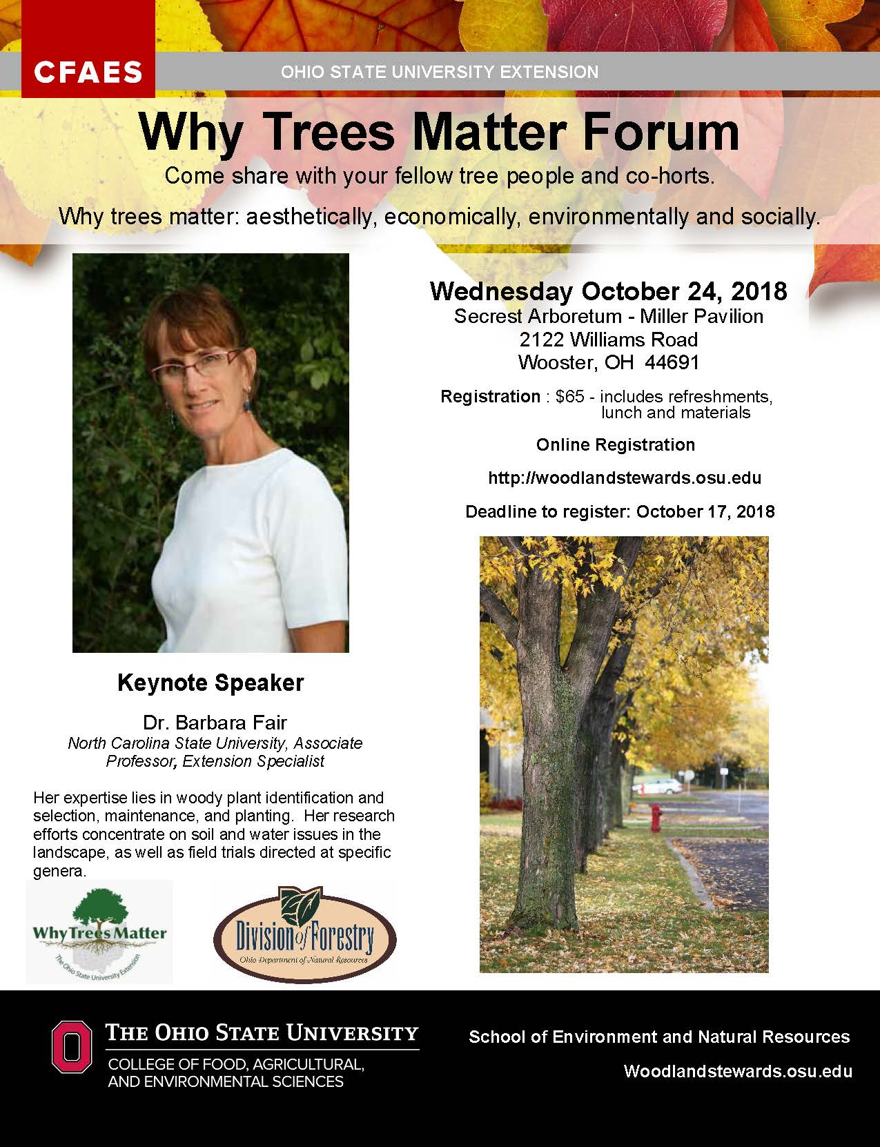 Why Trees Matter Flyer