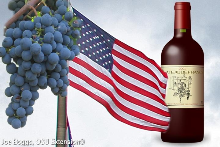 Grapes, American Flag, and French Wine