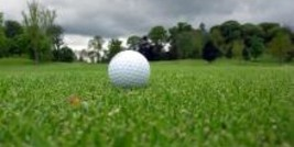 Golf Ball on Managed Turf